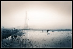 Urban touch to rural beauty (IrisOfGlass) Tags: morning india rural maharashtra farmer konkan sigma1020mm nikond80