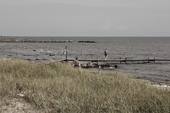 Öland beach (east side)
