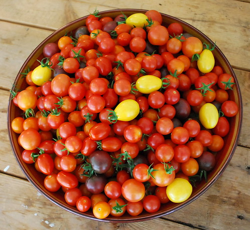 Bowl of Cherry Tomatoes 2