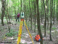 Wald-Check