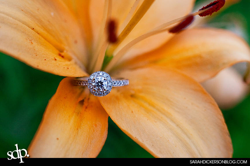 Kauffman Gardens, Kansas City Missouri engagement photography