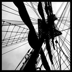 Sail Amsterdam 2010 - 83 (Jan Ronald Crans) Tags: bw amsterdam boot ship wand sail mast zeil bulgarian schip bulgarije kaliakra kraaienest sail2010