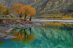 Pure Aqua Reflection (M Atif Saeed) Tags: autumn pakistan sunset mountain lake mountains reflection tree nature water yellow river landscape pond minolta areas northern northernareas arcticocean colorphotoaward atifsaeed gettyimagespakistanq1