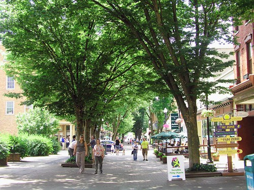 Loudoun Street Mall Center_RobinCardillo