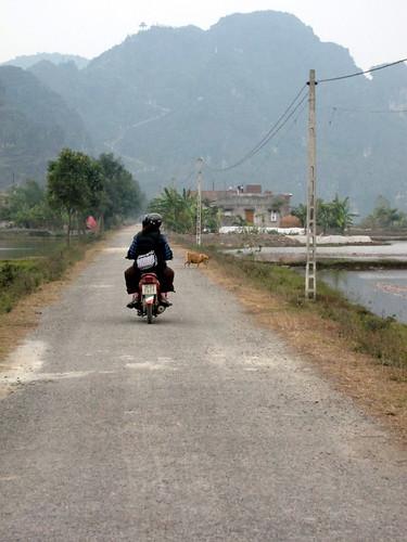 2011.01.26 - Ninh Binh