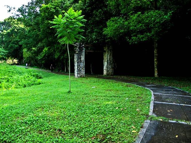 IMG_0238 Gunung Lang , Ipoh