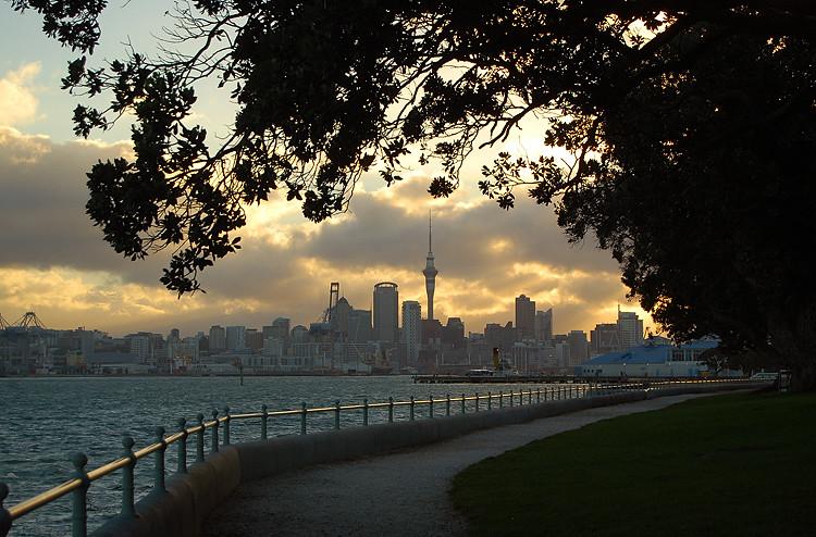 Auckland_city