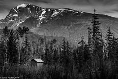 Valemount BC.jpg (jamiepacker99) Tags: june roadtrip rockys 2017 valmount britishcolumbia summer blackandwhite hut mountain snow trees canada