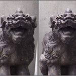 DSCF2183 築土神社・狛犬 tsukudo shrine (parallel 3D) thumbnail