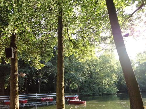 Cafe am Neuen See in Tiergarten
