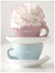 His & hers  xxxx (Iro {Ivy style33}) Tags: pink flower miniatures pastels teacups carnation lightblue mydaytoday softtones photographythroughivyseyes hishersxxxx teatimefortwo