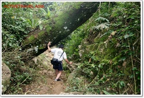 Trekking Mai Chau, Vietnam