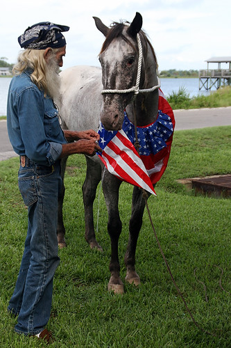 A Horse Being Prepared for the Clamerica Celebration Parade