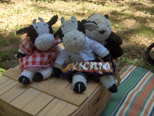 Hi everybody! Today we are having...a PICNIC! tee hee