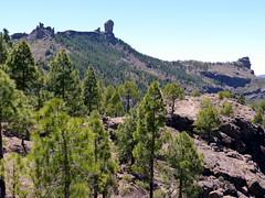 Gran Canaria - Roque Nublo & Surroundings in the Spring