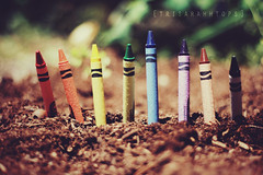 Growing Dreams (Sarah Ching) Tags: new blue red orange brown plant black color green classic nature yellow paper outside rainbow focus colorful purple bokeh grow violet ground sharp explore growth soil dirt wax crayons crayon straight tilt frontpage sprout crayola lean