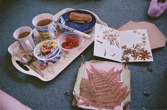 breakfast & pressed flowers (Adele M. Reed) Tags: morning film home breakfast 35mm tea toast strawberries visiting 800 stneots laughingcow pressedflowers canoneos500n fujisuperiaxtra