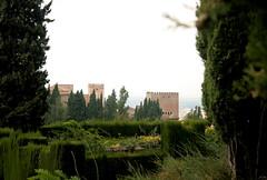 Blick auf den Palacio Real von Generalife aus, Alhambra, Andalusien