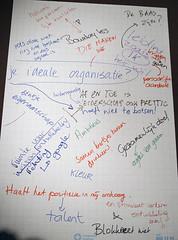 ideale organisatie II