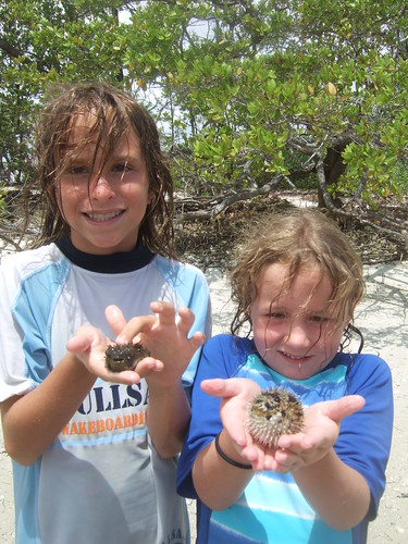 Harper, Mandy and porcupinefish