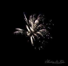 FourthofJuly2010_22