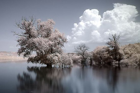 03_infrared_photography_2