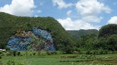 Life (Ben O'Bro) Tags: life cliff wall painting paint cuba evolution 2010 prehistory muralofprehistory