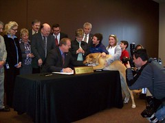 Governor signs puppy mill bill as first dog watches (Learfield News) Tags: march governor buck democrat 2010 culver legislation puppymill radioiowa