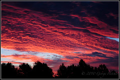 Oklahoma Sunrise (GFletch -- persistently behind :)) Tags: blue red sky orange oklahoma silhouette sunrise tahlequah canonef28135is canon40d