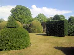 Lytes Cary Topiary