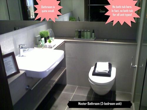 Master bath (3Br)