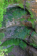 Wildcat Canyon (stormdog42) Tags: nature water landscape flow waterfall illinois sandstone outdoor canyon erosion greenery starvedrockstatepark