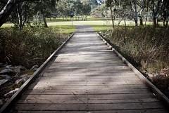 Bridge (Revolution51) Tags: park wood bridge river walking wooden scenery trail torrens linear