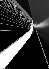 The Swan II (jetrated) Tags: bridge bw white abstract black netherlands architecture swan rotterdam erasmus fineart brug maas zwaan allrightsreservedcopyrightchaimfrank