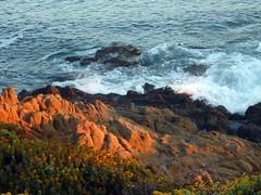 Coastal Views 1 (medaibl) Tags: california flowers sunset water rocks waves splash centralcoast medhathi coastalandwaterviewsbymi