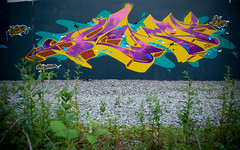 Purps (Scotty Cash) Tags: canada vancouver graffiti 2010 nwk sueme 9lives