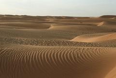Mauretanien (ursulazrich) Tags: sahara morocco maroc marokko mauritania mauritanie mauretanien westernsahara westsahara