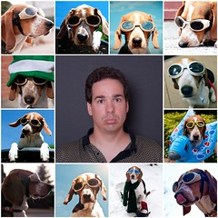 31/52 Nothing to see here... (Paguma / Darren) Tags: dog man male me fdsflickrtoys mosaic goggles hound floyd doggles