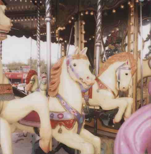carousels_merry-go-round_14