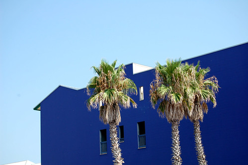 Blue building, blue sky and palm trees