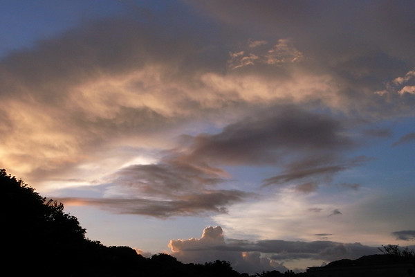 ワニに見える雲