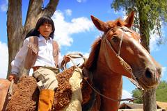 El orientalito (Eduardo Amorim) Tags: boy horses horse southamerica criollo caballo uruguay cheval caballos cavalos pferde herd cavalli cavallo cavalo gauchos pferd menino pampa junge garon chevaux gaucho ragazzo guri  amricadosul uruguai gacho campero amriquedusud  gachos  sudamrica suramrica pi amricadelsur sdamerika gregge crioulo troupeau caballoscriollos herde criollos  tropillas camperos americadelsud tropilhas tacuaremb tropilla crioulos cavalocrioulo americameridionale tropilha caballocriollo piazito campeiros campeiro eduardoamorim cavaloscrioulos iayayam yamaiay fiestadelapatriagaucha departamentodetacuaremb pampauruguaio pampauruguaya