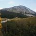 Kato Arrena peak