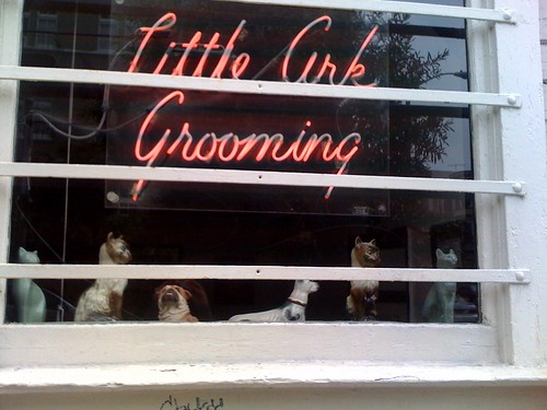 Animal grooming San francisco