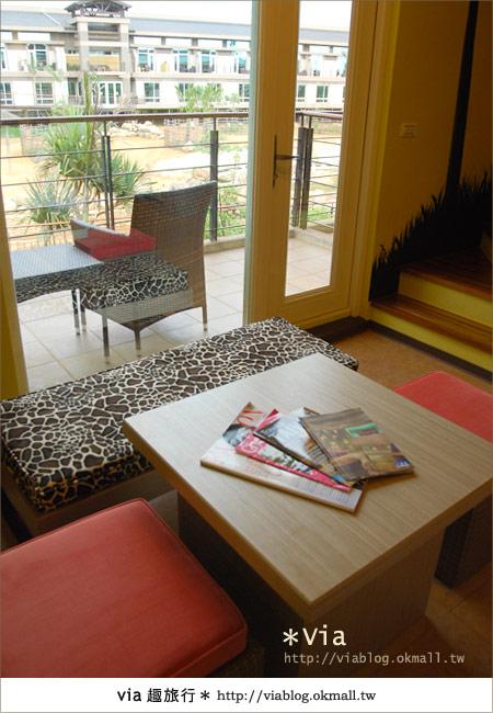 【新竹住宿】來去和動物住一晚~關西六福莊生態渡假旅館34