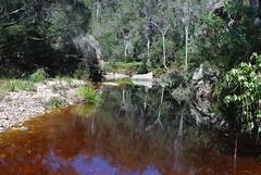 Reflections (Joybelle007) Tags: water reflections rocks pebbles nsw bourndanationalpark australiasbestreflections