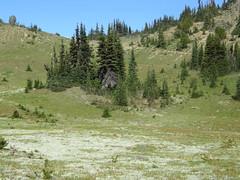 Marmot Pass basin.