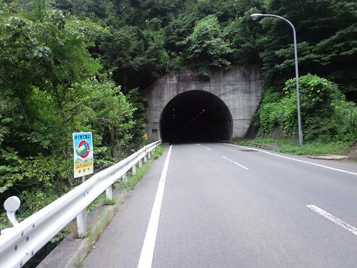 雛鶴トンネル(禾生側から)