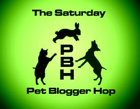 The Saturday Pet Blogger Hop (Green)