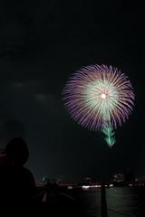 第23回東京湾大華火祭 八重芯錦牡丹紫光露